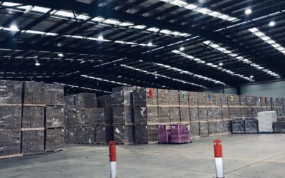 Transport, Ship & Store Your Goods With Confidence: 3PL Warehousing and Distribution